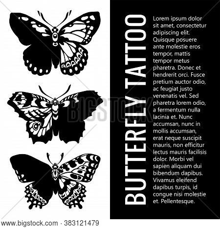 Beautiful Winged Butterfly. Collection Of Butterfly Tattoos . Mystical Symbol Of Freedom. Illustrati