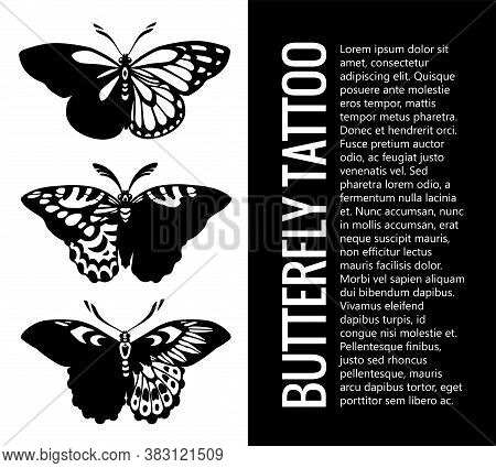 Set Of Butterfly Silhouettes . Tattoo Butterfly. Tropical Butterflies. Mystical Symbol Of Beautiful.