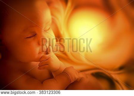 Embryo Inside Mother, Ultrasound Image, Maternity Concept Design