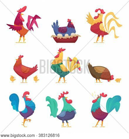 Roosters And Hens. Country Domestic Chicken Farm Birds Eco Breeding Industry Vector Cartoon Characte