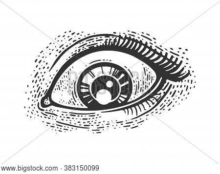Woman Eye Sketch Engraving Vector Illustration. T-shirt Apparel Print Design. Scratch Board Imitatio