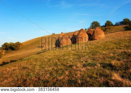 Hay Piles On Field At Countryside In Autumn. Heap Of Haystack With Green Grass And Trees On Backgrou
