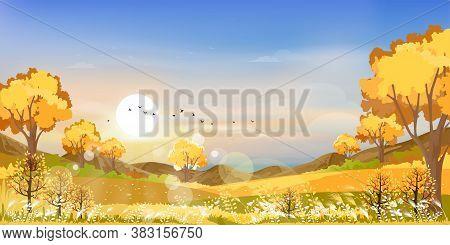 Autumn Landscape Wonderland Forest With Grass Land, Mid Autumn Natural In Orange Foliage, Fall Seaso