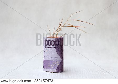 Banknote Money Ten Thousand Indonesia Rupiah With Brown Tree Branch On The White Floor. Concept Of S
