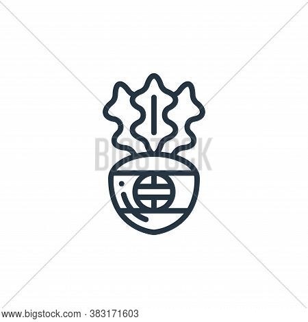 radish icon isolated on white background from chinese new year collection. radish icon trendy and mo