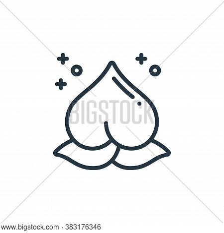 peach icon isolated on white background from chinese new year collection. peach icon trendy and mode