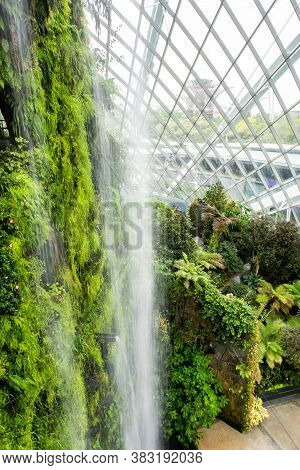 Singapore, 22/01/19. Cloud Forest Conservatory In Gardens By The Bay In Singapore With Cool-moist Gr