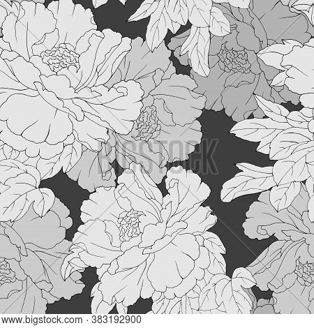 Seamless Pattern With Pions In Monochrome Colors, Ornament For Wallpaper And Fabric, Background For