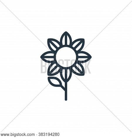 sunflower icon isolated on white background from spring collection. sunflower icon trendy and modern