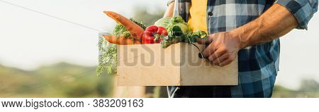 Cropped View Of Rancher In Plaid Shirt Holding Box Full Of Fresh Vegetables, Website Header