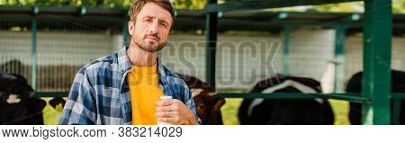 Horizontal Concept Of Rancher In Plaid Shirt With Bottle Of Fresh Milk Near Cowshed