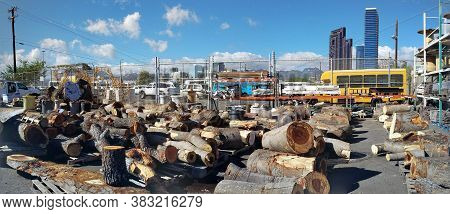 Honolulu - August 12, 2017:  Cuts Of Wood From Large Tree For Sale In Parking Lot Of Re-use Hawaii.
