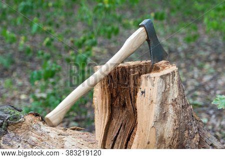 Axe Stuck Into Wooden Tree Stump, Forest.