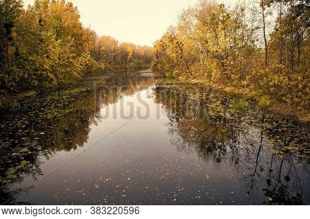 Autumn Landscape. Calm River Surface Reflecting Autumn Colorful Trees. Beautiful Autumn Background C