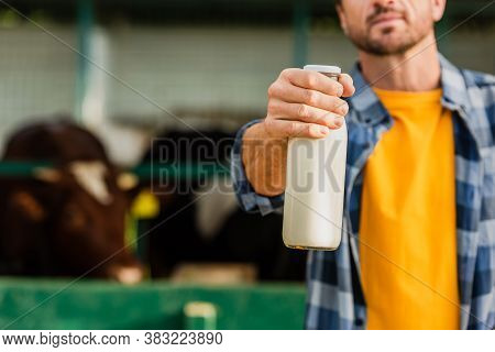 Cropped View Of Rancher In Checkered Shirt Showing Bottle Of Fresh Milk, Selective Focus