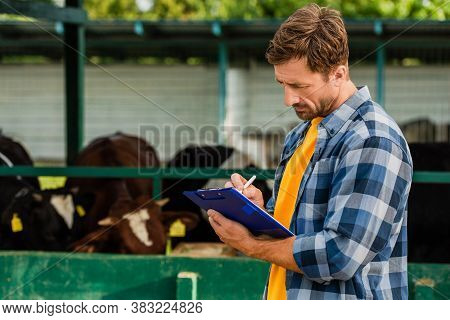 Rancher In Plaid Shirt Writing On Clipboard Near Cowshed On Farm