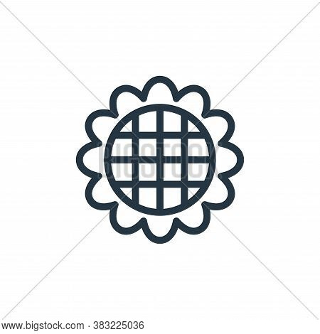sunflower icon isolated on white background from flower collection. sunflower icon trendy and modern