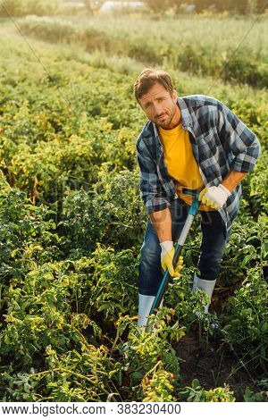 Rancher In Checkered Shirt, Gloves And Rubber Boots Digging In Field While Looking At Camera