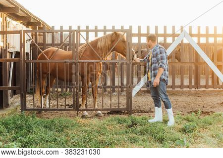 Rancher In Rubber Boots And Plaid Shirt Touching Head Of Brown Horse In Corral