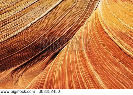 The Wave is an awesome vivid swirling petrified dune sandstone formation in Coyote Buttes North. It could be seen in Paria Canyon-Vermilion Cliffs Wilderness, Arizona. USA