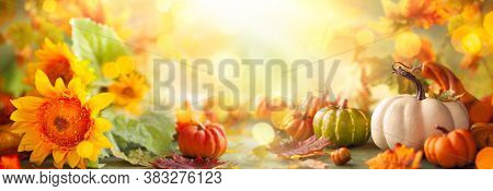 Festive autumn decor from pumpkins, flowers and fall leaves. Concept of Thanksgiving day or Halloween with copy space