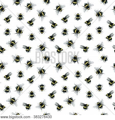 Bumblebee Watercolor Flying Insect Organic Nature Seamless Pattern Illustration