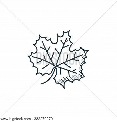 maple leaf icon isolated on white background from food collection. maple leaf icon trendy and modern