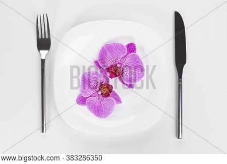 Orchid Phalaenopsis Flower On A Wite Plate On A White Background