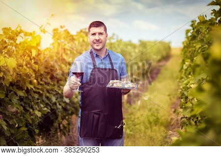 Modern Winemaker In Vineyard Holding Glass Of Local Red Wine And Variety Of Italian Food - Smiling E
