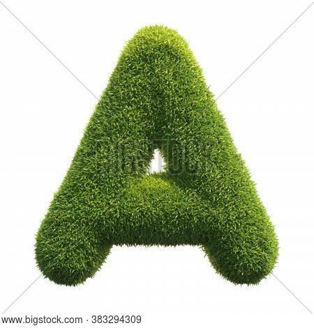 Grass Font 3d Rendering Letter A, Three Dimensional Object
