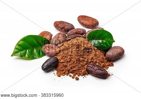 Cocoa Beans With Cocoa Leaves And Cocoa Powder Isolated On White