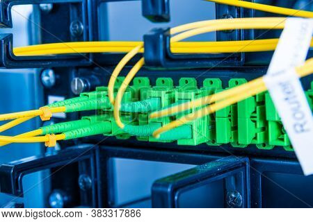 Fiber Optic cables connected to an optic ports - data switch in internet data center