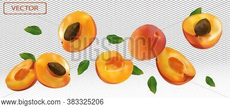 Apricot Falling From Different Angles. Flying Apricot With Green Leaf On Transparent Background. 3d