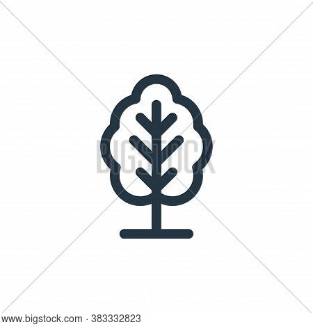tree icon isolated on white background from trees collection. tree icon trendy and modern tree symbo