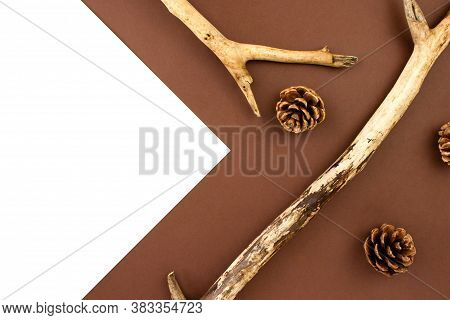 Wooden Branches With Fir Cones Creative Flat Lay On Brown And White Background Top View With Copy Sp