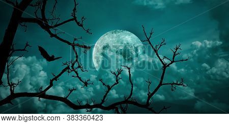Halloween Background. Spooky Forest Dead Tree With Full Moon Sky.