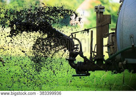 Tractor in July drives manures on the field