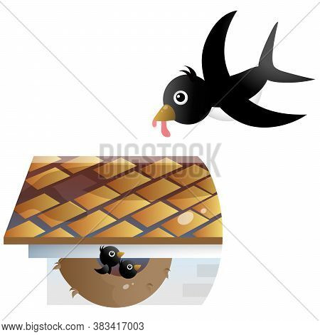 Color Image Of Cartoon Swallow Nest With Nestlings Or Chicks On White Background. Vector Illustratio