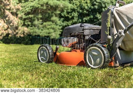 Gardening. Mowing A Lawn With A Gasoline Lawnmower, Close-up On A Wheel. Grass Cutting. Petrol Engin