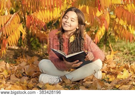 Self Education Concept. Hobby And Interests. Child Enjoy Reading. Schoolgirl Study. Study Every Day.