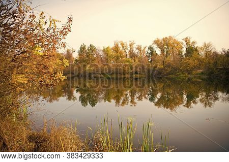 Tranquil Water. Autumn Landscape. Calm River Surface Reflecting Autumn Colorful Trees. Beautiful Aut