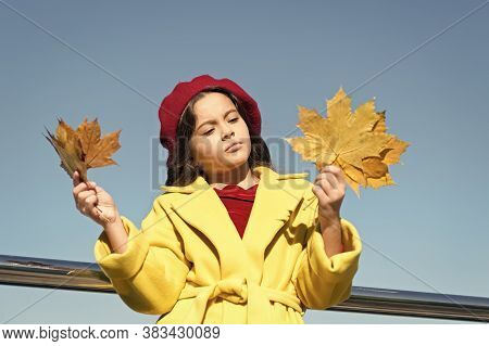 Melancholy Concept. Ideas For Autumn Leisure. Kid Hold Maple Leaves. Small Girl Wear Fall Outfit Out