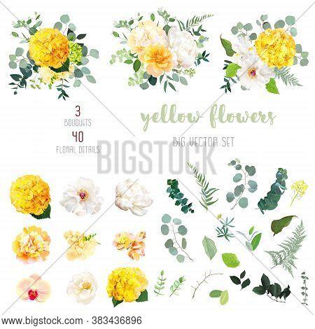 Yellow Hydrangea, Mustard Rose, Peony, White Iris, Orchid, Spring Garden Flowers, Eucalyptus, Greene