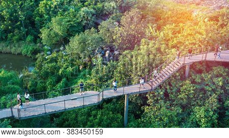 Bangkok, Thailand - October 14 2017: Forest Learning Center, The Sky Walk Section At The Ptt Green I