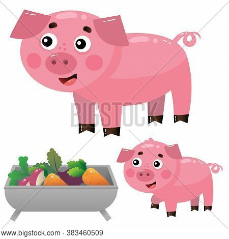 Color Images Of Cartoon Pig With Piggy On White Background. Farm Animals. Vector Illustration Set Fo