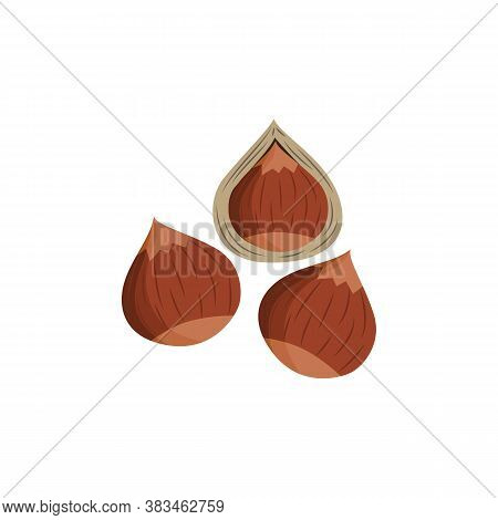 Brown Hazel Nuts With And Without Shell - Isolated Food Vector Illustration