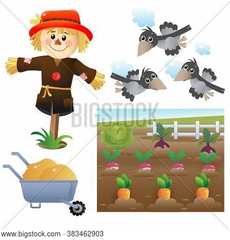 Color Images Of Cartoon Stuffed Or Scarecrow With Crows. Vegetable Garden. Vector Illustration Set F
