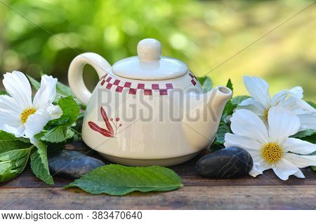 Pretty Teapot Among Fresh Mint Leaf And White Flowers On A Wooden Table In Garden