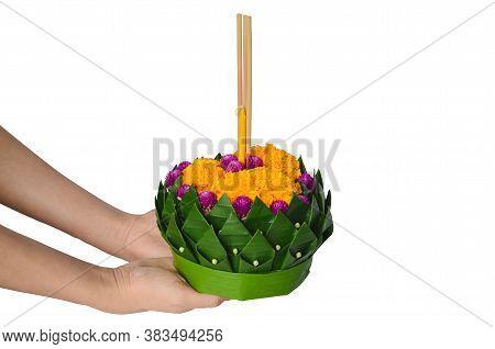 Hand Holding Banana Leaf Krathong For Thailand Full Moon Or Loy Krathong Festival Isolated On White