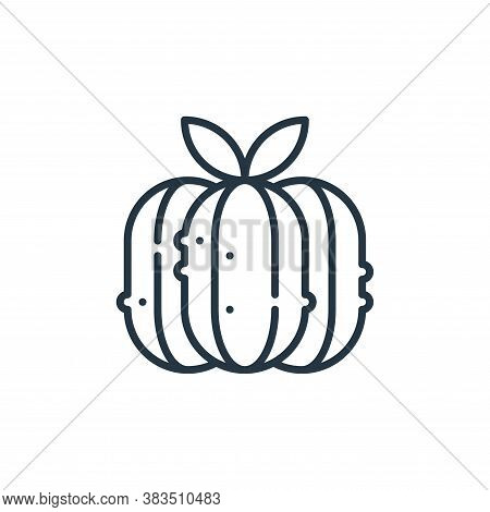 squash icon isolated on white background from cinco de mayo collection. squash icon trendy and moder